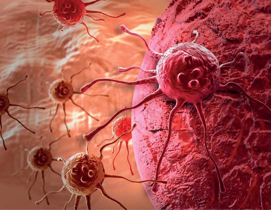16 EF577 ONCOLOGIA FARMACEUTICOS CANCER celulas